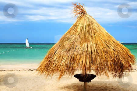 Tropical beach stock photo, Tropical beach of a Caribbean island with palm branches shelter by Elena Elisseeva
