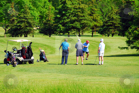 Seniors golfing stock photo, Active senior men on golf course by Elena Elisseeva