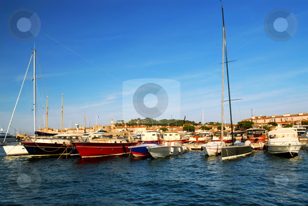 Boats at St.Tropez stock photo, Luxury boats at the dock in St. Tropez in French Riviera by Elena Elisseeva