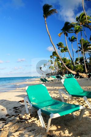 Sandy beach of tropical resort stock photo, Sandy beach of tropical resort with palm trees and reclining chairs by Elena Elisseeva