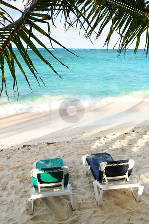Sandy beach of tropical resort stock photo, Sandy beach of tropical resort with palm trees and two reclining chairs by Elena Elisseeva