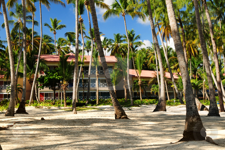 Hotel at tropical resort stock photo, Luxury hotel at tropical resort on ocean shore with palm trees by Elena Elisseeva