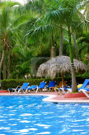Swimming pool stock photo, Swimming pool and palm trees at tropical resort by Elena Elisseeva