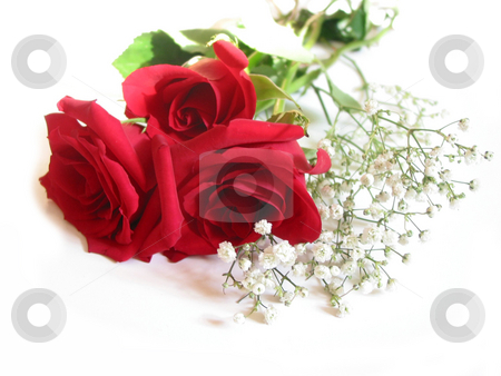 Rose bouquet on white stock photo, Bouquet of three red roses on white background by Elena Elisseeva