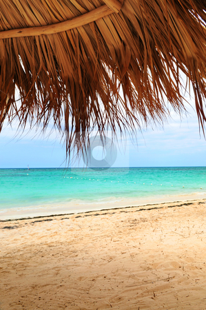 Tropical beach stock photo, View from under palm leaves shelter onto tropical beach of a Caribbean island by Elena Elisseeva