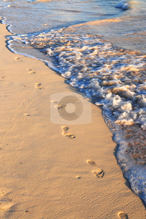 Footprints on sandy beach stock photo, Footprints on sandy tropical beach washed away by waves by Elena Elisseeva