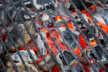 Barbecue grid stock photo, Barbecue grid background by Elena Elisseeva