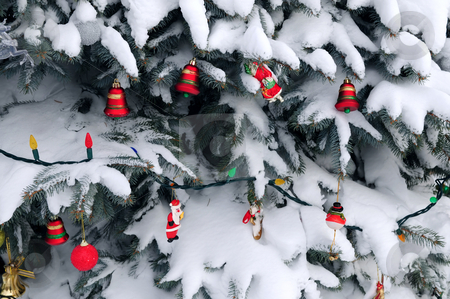 Christmas decorations stock photo, Christmas ornaments handing on snow covered spruce tree outside by Elena Elisseeva
