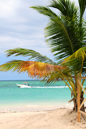 Tropical beach stock photo, Tropical beach with palm tree and small boat by Elena Elisseeva