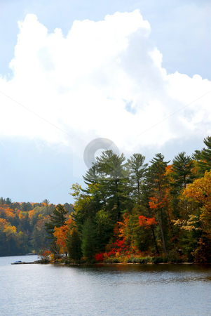 Autumn lake stock photo, Lake and forest in the fall in northern Ontario by Elena Elisseeva