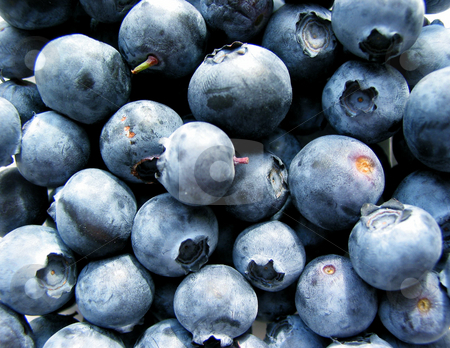 Blueberries macro stock photo, Fresh blueberries close up by Elena Elisseeva