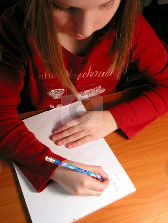 Girl study homework stock photo, Young girl studying, homework by Elena Elisseeva