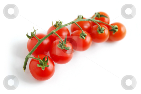 Cherry tomatoes stock photo, Cherry tomatoes on white background by Elena Elisseeva
