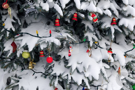 Christmas decorations stock photo, Christmas ornaments hanging on snow covered spruce tree outside by Elena Elisseeva