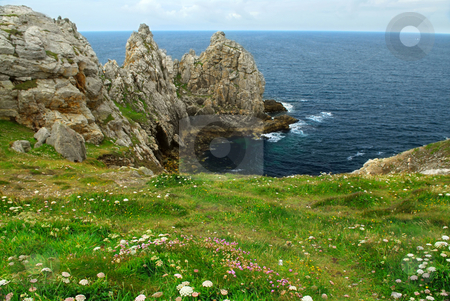 Atlantic coast in Brittany stock photo, Scenic view from Pointe de Penhir on Atlantic coast in Brittany, France. Focus on foreground flowers. by Elena Elisseeva