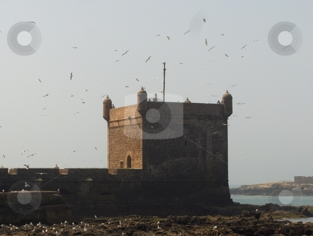 Ocean Fortress stock photo, A fort on a harbor in Essaouria, Morocco by Jessica Tooley