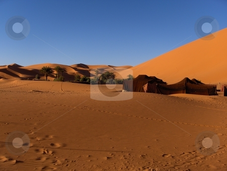 Morocco Dunes stock photo, Sand dunes in Morocco by Jessica Tooley