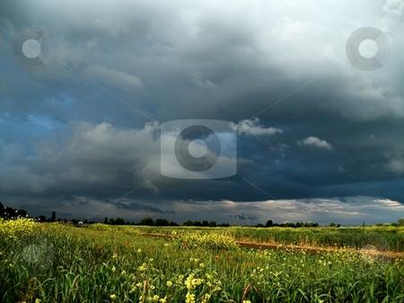 Storm stock photo, Storm by Pier Luigi Ricci