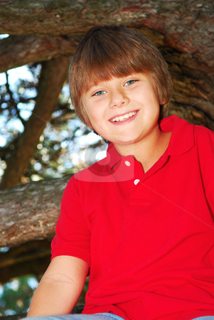 Boy climbing a tree stock photo, Young boy sitting on a tree branch in summer park by Elena Elisseeva
