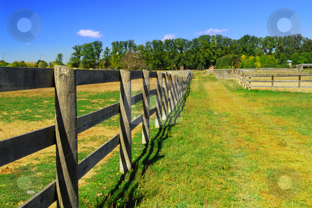 Rural landscape stock photo, Wooden farm fence and road in rural Ontario, Canada. by Elena Elisseeva