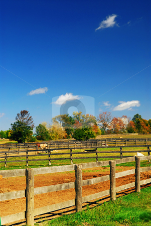Rural landscape stock photo, Rural farm landscape in early fall in Ontario, Canada by Elena Elisseeva
