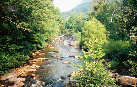 Mountain Stream stock photo, Mountain Stream between the Blue Ridge and Smokey Mountains by Marburg