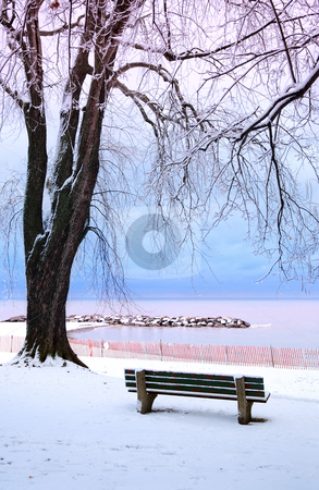 Winter park stock photo, Winter park with a bench covered with snow. Beach area, Toronto, Canada. by Elena Elisseeva