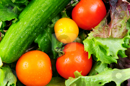 Fresh vegetables stock photo, Assorted fresh vegetables - tomatoes, cucumber, green lettuce by Elena Elisseeva