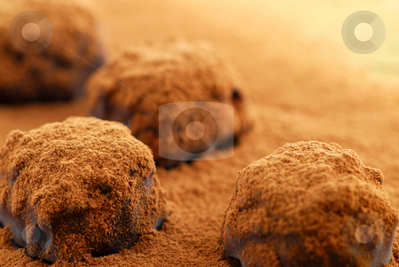 Chocolate truffles stock photo, Macro of dark chocolate truffles sprinkled with cocoa powder with copy space by Elena Elisseeva