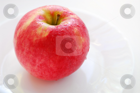 Red apple on a plate stock photo, Red dewy apple on a white plate by Elena Elisseeva
