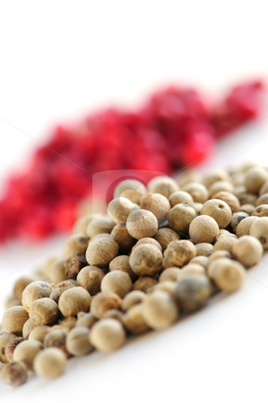 Red and white peppercorns stock photo, Heaps of white and red peppercorns on white background by Elena Elisseeva