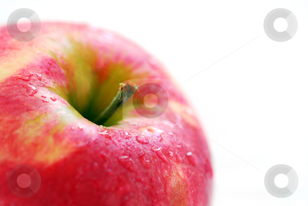 Red apple stock photo, Macro of red apple with water droplets on white background by Elena Elisseeva