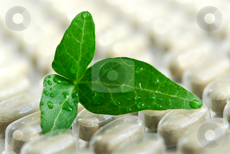 Herbal supplement stock photo, Herbal supplement pills close up with fresh green leaf by Elena Elisseeva