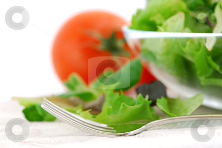 Baby greens and tomatoes stock photo, Fresh baby greens salad and tomatoes close up by Elena Elisseeva