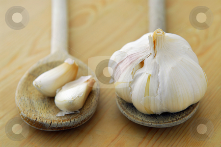 Garlics and spoons stock photo, Bulbs and cloves of garlic on wooden cooking spoons by Elena Elisseeva