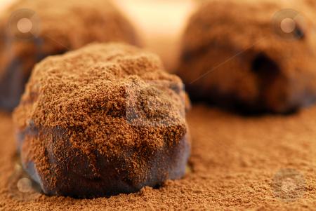 Chocolate truffles stock photo, Macro of dark chocolate truffles sprinkled with cocoa powder by Elena Elisseeva