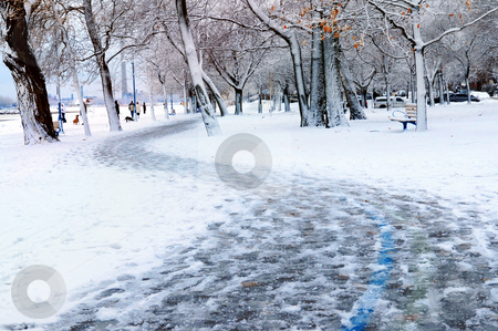Winter park stock photo, Winter park and recreational trail covered with snow. Beach area, Toronto, Canada. by Elena Elisseeva