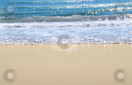 Ocean shore stock photo, Ocean shore with sandy beach and advancing wave by Elena Elisseeva