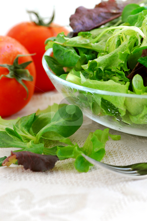 Baby greens and tomatoes stock photo, Fresh baby greens salad and tomatoes on white background by Elena Elisseeva