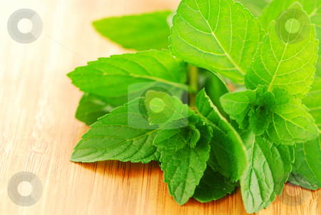 Fresh mint stock photo, Sprigs of fresh green mint on a cutting board, closeup by Elena Elisseeva