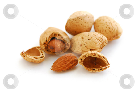 Almonds stock photo, Almonds close up isolated on white background by Elena Elisseeva