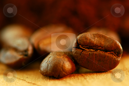 Coffee beans stock photo, Extreme macro image of gourmet coffee beans by Elena Elisseeva