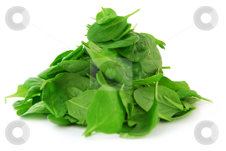 Spinach stock photo, Pile of spinach isolated on white background by Elena Elisseeva