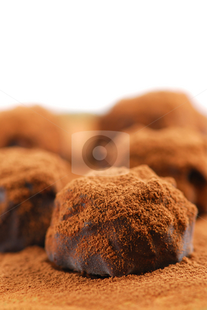 Chocolate truffles stock photo, Macro of dark chocolate truffles sprinkled with cocoa powder with white copy space by Elena Elisseeva