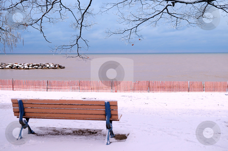 Winter bench stock photo, Winter park with a bench covered with snow. Beach area, Toronto, Canada. by Elena Elisseeva