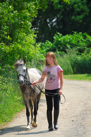 Girl walk pony stock photo, Young girl walking with a pony on a farm road by Elena Elisseeva