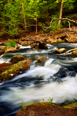 River rapids stock photo, Rocky river rapids in wilderness in Ontario, Canada. by Elena Elisseeva