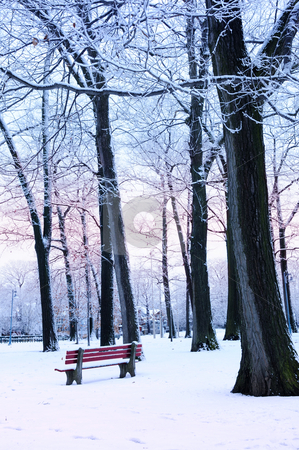 Winter park stock photo, Winter park covered with snow at dusk. Beach area, Toronto, Canada. by Elena Elisseeva