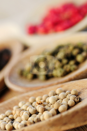 Assorted peppercorns stock photo, Assorted peppercorns in wooden cooking spoons macro by Elena Elisseeva
