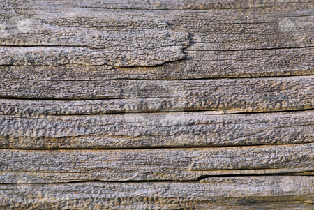 Old wood stock photo, Background of old weathered wood close up by Elena Elisseeva